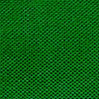 Light Green - #012