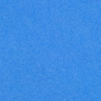 LIght Blue - #009